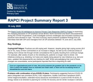 RAPCI summary report 3